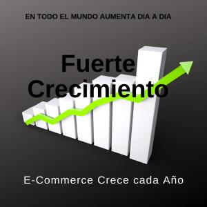 E commerce Fuerte Crecimiento